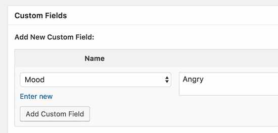 نکات، ترفندها و هک custom fields در وردپرس 6